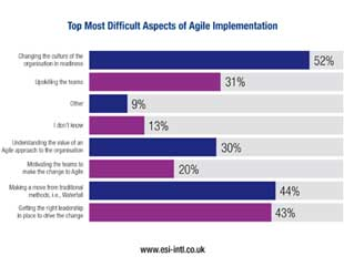 A Project Management Office (PMO) View of Agile