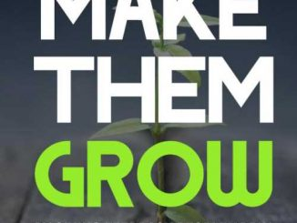 Make Them Grow by Giving Feedback People Apply